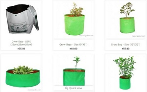 Well Established,branded and Profitable Garden Products Shop Available for Sale in Chennai