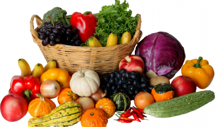 Running Fruit and Vegetable Shop for Sale in Noida