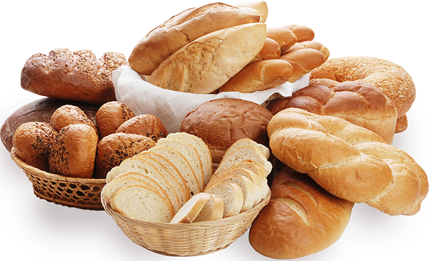 Bread and Bakery products manufacturing plant for sale in Telangana