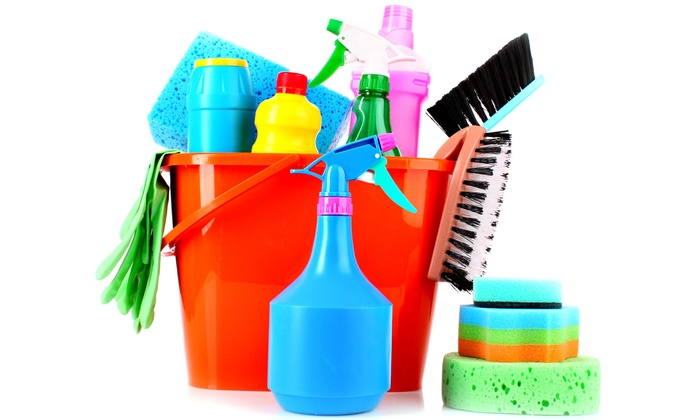 A profitable House cleaning Manufacturing Business is for Sale in Jhansi