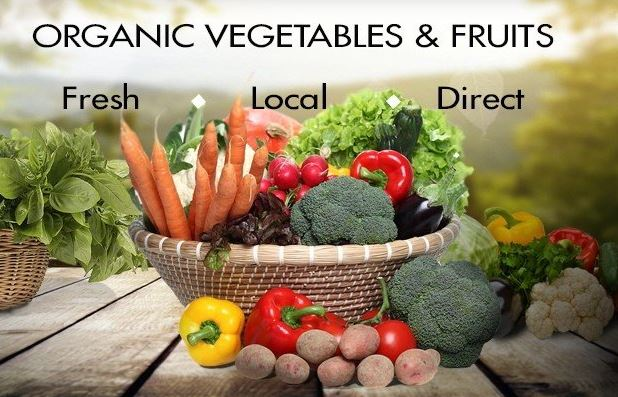 Chennai Based Online Marketplace That Sells Organic Natural & Sustainable Products Pan India