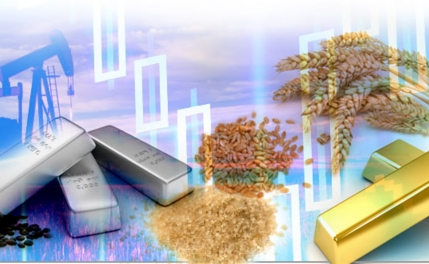 The Commodity Advisory Service company for sale in Ludhiana