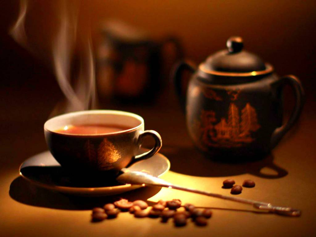 Coffee Shop in SEZ with 10 years Lease and Exclusivity for Sale in Hyderabad