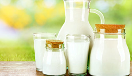 Dairy Business for Sale in Visakhapatnam
