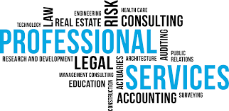 Large Clientele base Legal and Accounting Services Business looking for Growth Capital