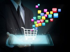 E-commerce Marketplace for Sale in Delhi- NCR