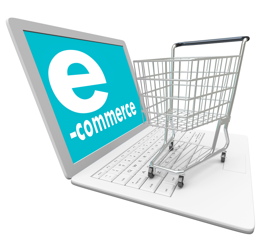 E-Commerce Business for Sale in Mangalore