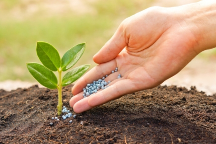 Fertilizer Industry for sale in Dachepalle,Guntur, Andhra Pradesh