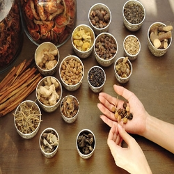 Ayurvedic Medicine & Products License for Sale