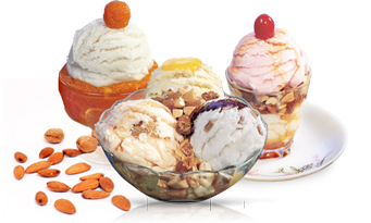 Ice Cream Parlour Franchise for Sale in Vijaywada, Andhra Pradesh