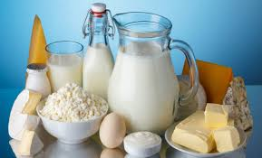 Milk Processing and Packaging Plant for Sale in Jammu and Kashmir