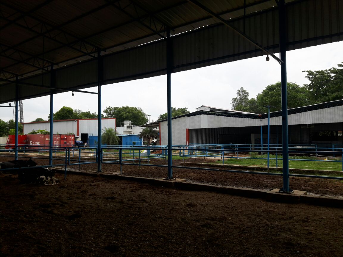 Fully Automated Hi-Tech Dairy Farm for Sale in Faridabad