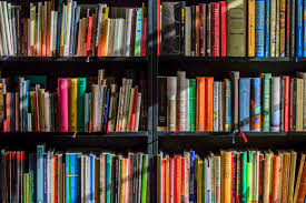 A Profitable Community Library Franchise for Sale in Thane