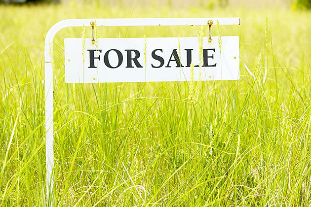 Industrial NA Land For Sale Near Bharuch, Gujarat - Land Size 350 Acres To 800 Acres