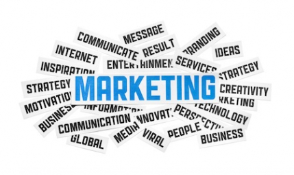 The Well Established Marketing Company for Sale in Delhi