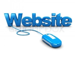 Well Established IT Solution Website for Sale in Junagadh