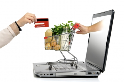 Already Running Grocery Platform for Sale in Delhi