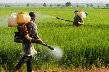 Agrochemical & Pesticides Manufacturing Business for Sale in Tamil Nadu.