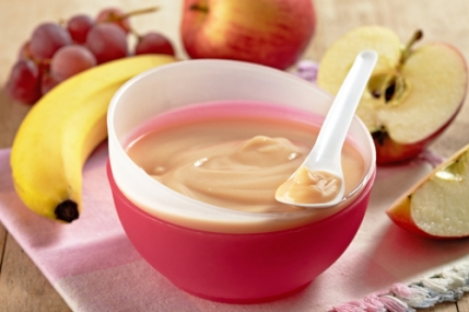 Baby Food Purees Business for Sale in Hyderabad