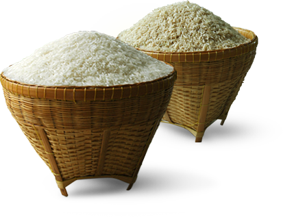 Rice Mill for Sale in Sasaram Bihar