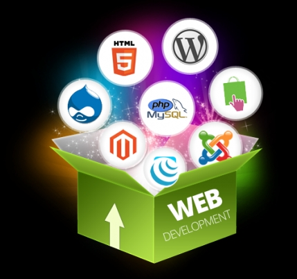 Leading Web Development Business Available for sale in Nainital