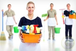 Profitable House Keeping Company for sale in Bhopal, Madhya Pradesh