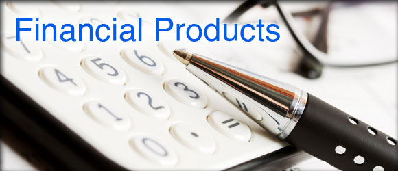 Profitable Ecommerce Business in Financial Product Is Available for Part/ Full Sale in Delhi