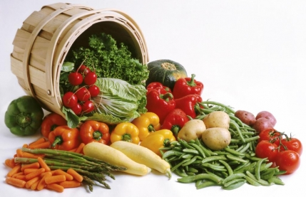 Online Vegetable business for sale in Mumbai