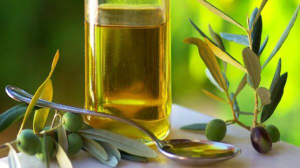 Biodiesel and Vegetable Oil Processing Factory for Sale in Madhya Pradesh