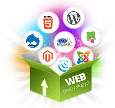 Software and Website Development Company Name for Sale