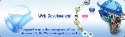 Web Designing and Development Company For Sale in Delhi