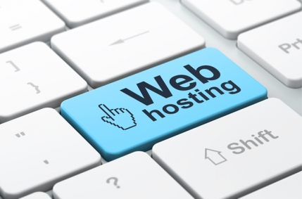 Web Hosting and Domain Registration Business for Sale in Dehi
