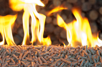 Profitable Wood Pellets (Clean Energy) Manufacturing Unit for Sale Nagpur