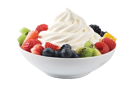 Running Frozen Yogurt Franchise Resale in Bangalore