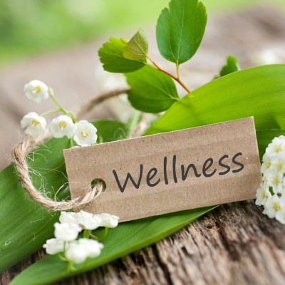 An e-commerce Business Providing Wellness Services seeking Investors